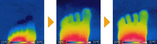 足の先 温度変化
